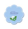 sticker label frame with a jasmine flower vector image