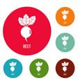beet icons circle set vector image vector image