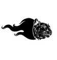 black silhouette a head a tiger with a flame vector image vector image