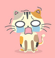 cartoon cat scared emotion pink background vector image
