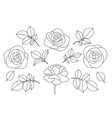 rose flowers and leaves sketch vector image vector image