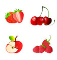 strawberry cherry apple raspberryset whole vector image