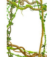 twisted wild lianas branches frame vector image