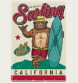 california surfing vintage colorful poster vector image vector image