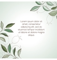 Hawthorn invitation card vector image vector image