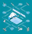 public swimming pool isometric flowchart vector image vector image