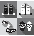 salt and pepper containers and icons set vector image vector image