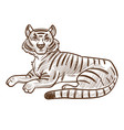 tiger animal lying hand drawn sketch vector image