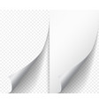white page curl corner on blank sheet of paper vector image