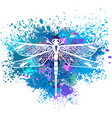 dragonfly on background of paint splashes vector image vector image