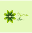 green spa leaf logo design template vector image