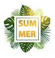 green summer tropical background with exotic palm vector image vector image