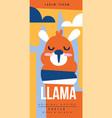 llama birds and animals poster original design vector image