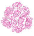 Peony drawing decorative composition vector image vector image