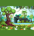 tropical wood jungle forest with palms and river vector image vector image
