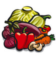 vegetables for nutrition vector image