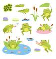 cartoon frogs cute water reptiles funny vector image vector image