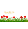Poppy white background