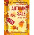 sale fallen leaves frame vector image vector image