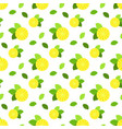 seamless pattern with citrus fruits lemon vector image