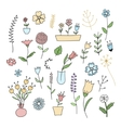 Set of spring plants and flowers vector image vector image