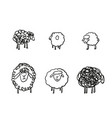 simple sketch different sheeps pen hand vector image