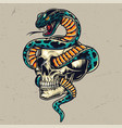 snake entwined with skull colorful concept vector image vector image