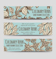 vintage culinary herbs horizontal banners vector image