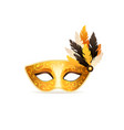 carnival mask isolated vector image