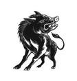 Angry wild hog razorback scratchboard vector image