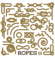 big set of nautical rope knots decorative vintage vector image vector image