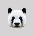 pixel siberian panda face vector image vector image