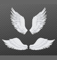 realistic wings beautiful isolated angel wings vector image vector image