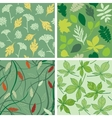 set seamless patterns with leaves vector image