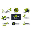 stevia leaves icons natural herbal sweetener set vector image