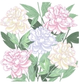 Background with pink and white peony vector image