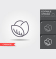 cabbage line icon with editable stroke with vector image