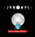moon phases design with owl on black background vector image vector image