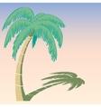 palm tree vector image