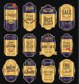 retro vintage golden frame background collection 6 vector image vector image