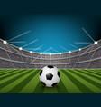 soccer ball on field stadium with light vector image