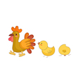 The cock with chick vector image vector image