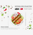 turkish cuisine middle east national dish vector image vector image