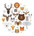 big animal face icon set cartoon heads fox vector image