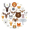 big animal face icon set cartoon heads of fox vector image