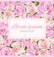 pink and beige roses greeting card copy space vector image