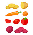 potato beet carrot tomato flat style vector image vector image