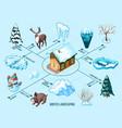 winter landscaping isometric flowchart vector image vector image