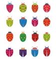 colorful ladybug vector image