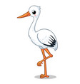 cute stork stands on one leg on a white background vector image vector image